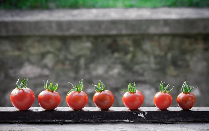 red ketogenic tomatoes on black surface