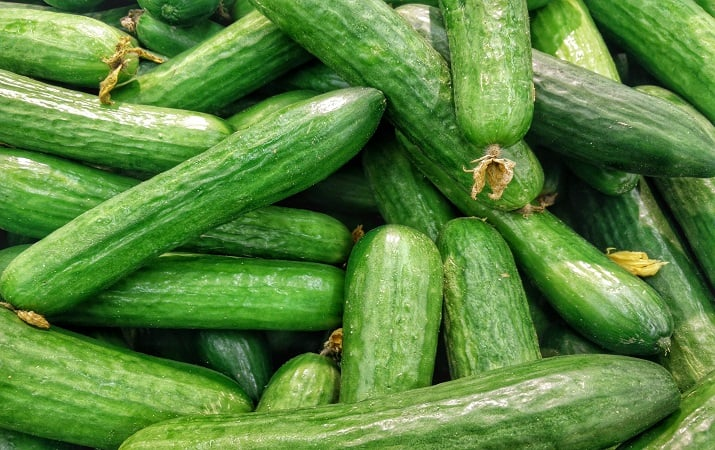 Cucumbers as a part of your keto diet macros.